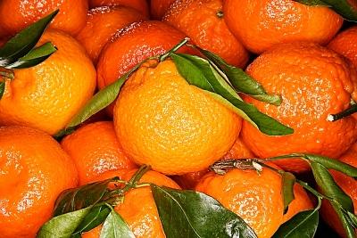 Clementine_oranges